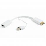 DSC-HDMI-DP-W